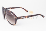 Carrera 38 Blonde Havana / Brown Gradient Sunglasses 38/S WDR